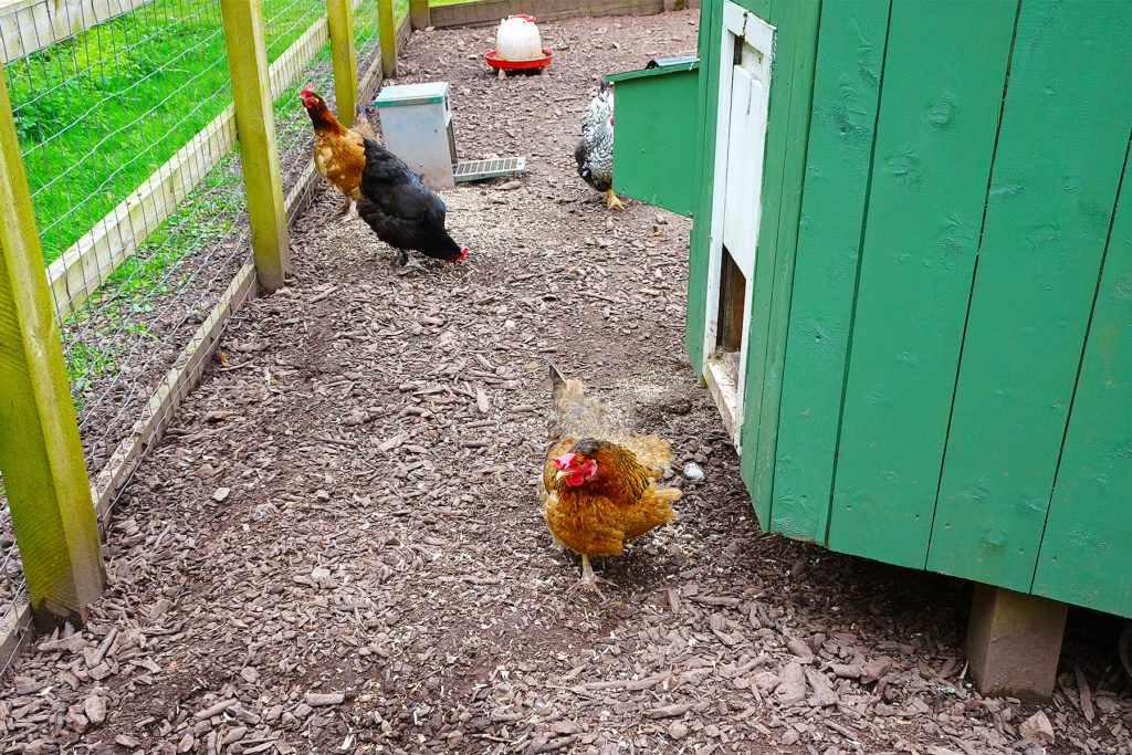 Hidden Valley Yurts (hens) One Epic Road Trip